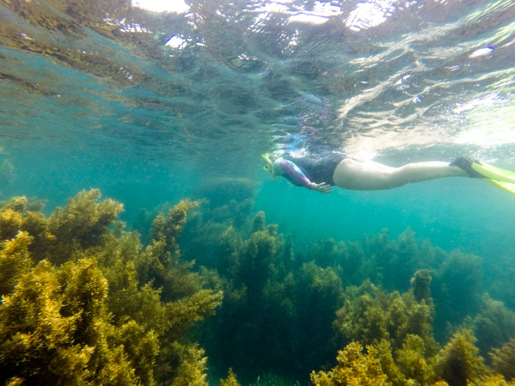 Best All You Can Eat Buffet In Nevada Winners 2018 10best: Nevada Snorkeling