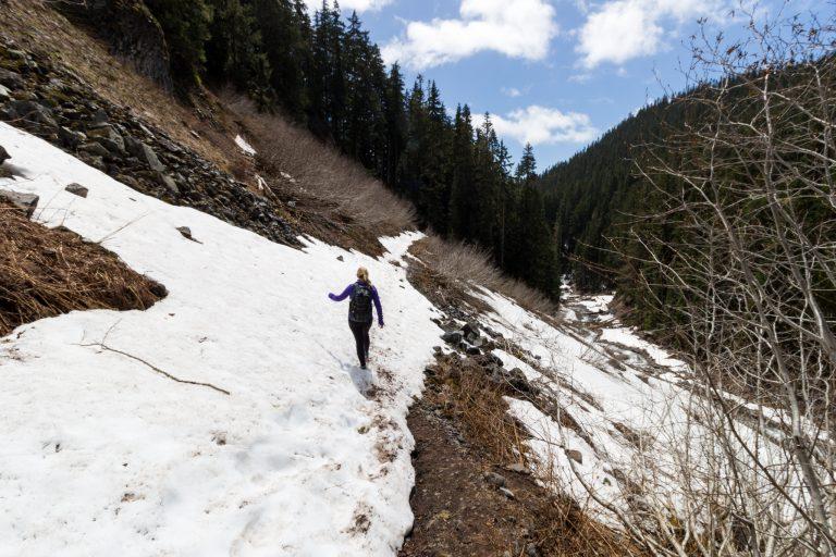Mt. Rainier National Park snow on trail