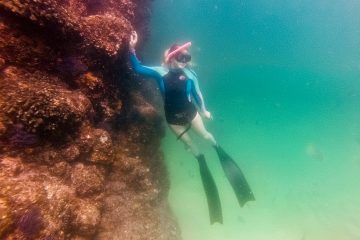 freediving in Cabo San Lucas