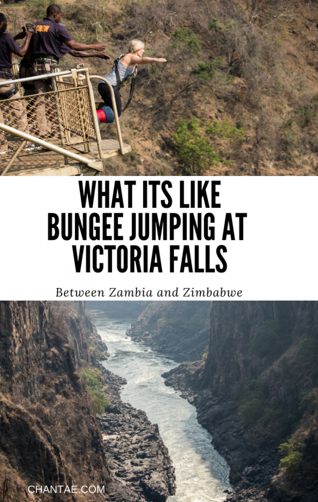 What it's like bungee jumping over Victoria Falls between Zambia and Zimbabwe with Shearwater Bungee.